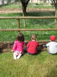 orto bambini nido